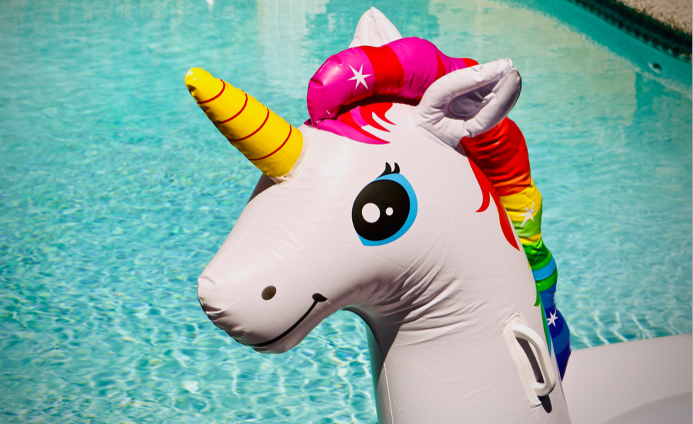 Unicorns aren't real. Scaling real businesses is damn hard.